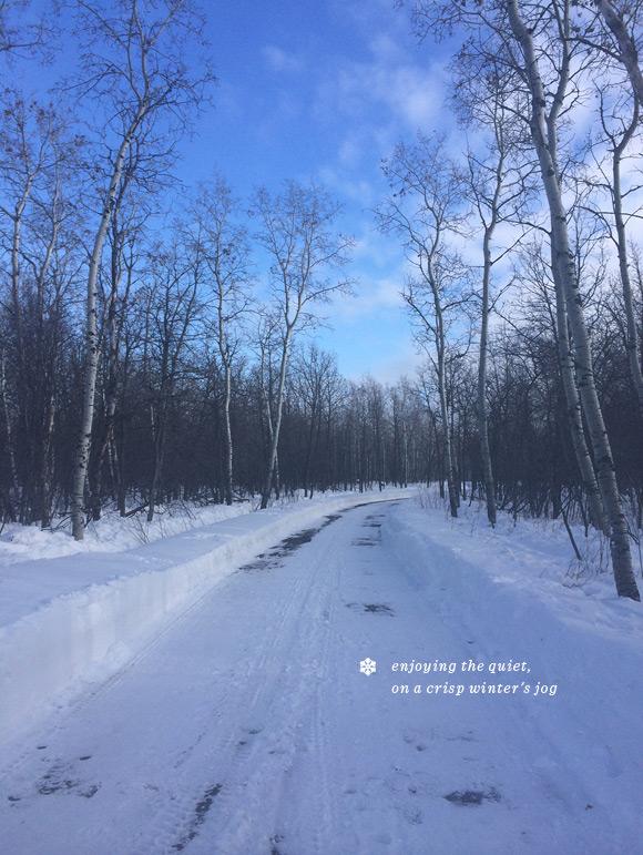 winter_2014_05