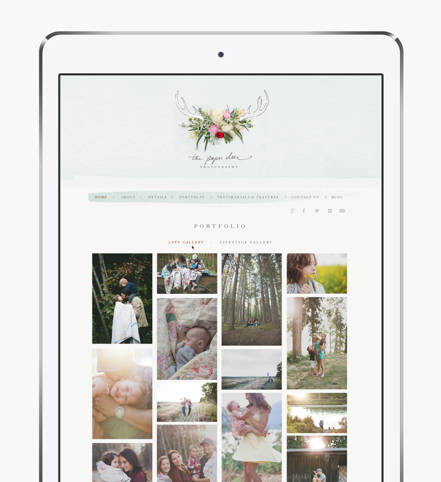 The Paper Deer Website Design - One Plus One Design