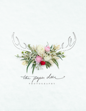 The Paper Deer Brand Identity - One Plus One Design